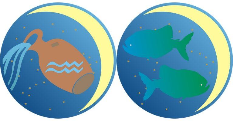 acquario-pesci